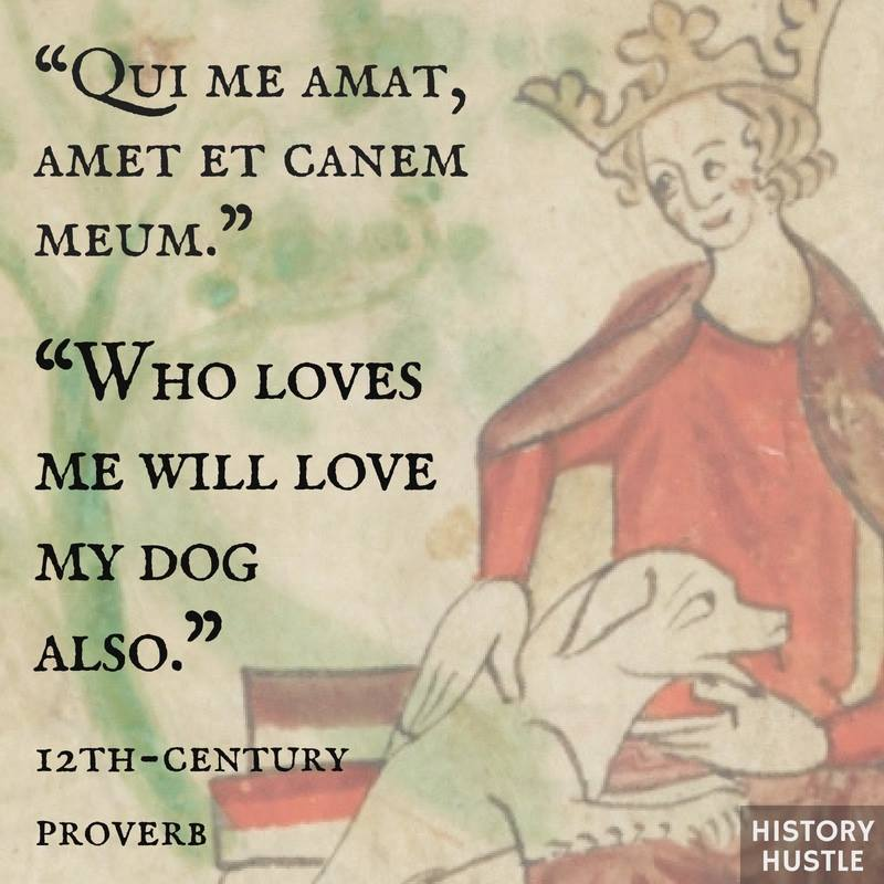 History Hustle quote dog proverb