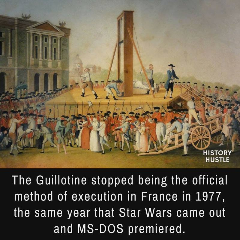 Guillotine fact History Hustle