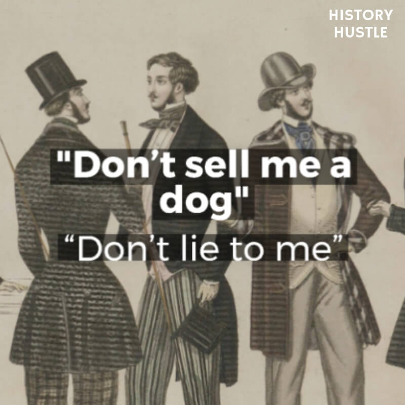 History Hustle Victorian Slang dont sell me a dog image