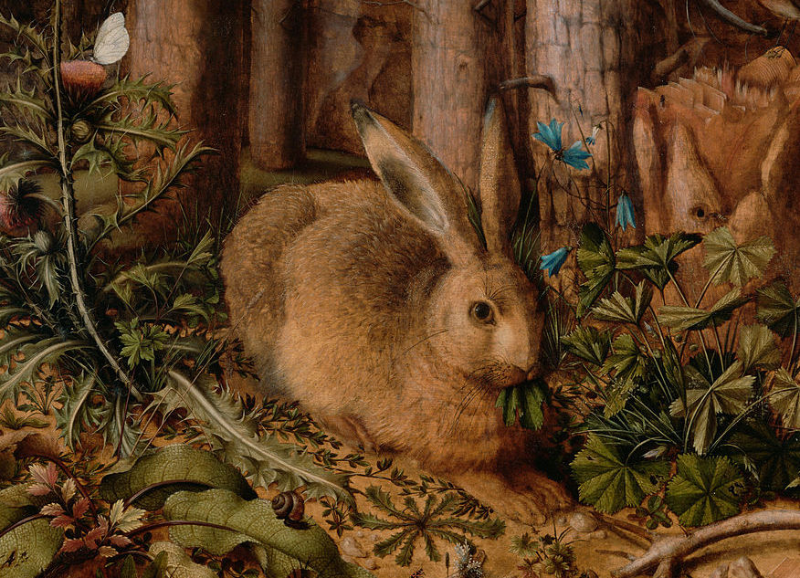 Rabbit art History Hustle image