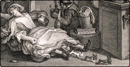 Toft rabbit History Hustle image