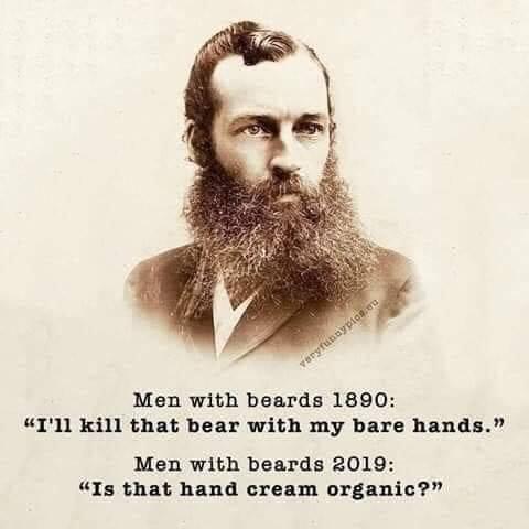 History Hustle history meme beard image