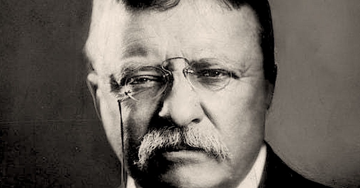 History Hustle Teddy Roosevelt Minnie Cox preview image